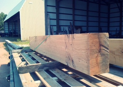 Standing Dead White Oak Beam