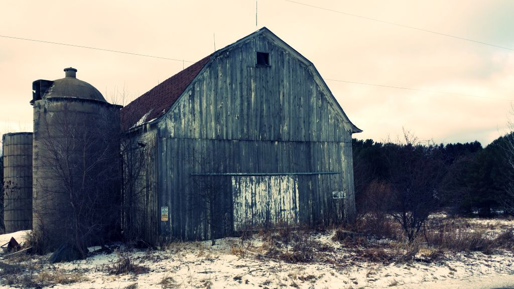 Antique barns, old buildings: deconstructing reclaimed wood