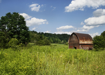 Old Wood Barn in Field